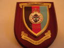 Directorate of Special Forces Headquarters Military Wall Plaque